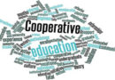 COOPERATIVE LEARNING E CLOUD